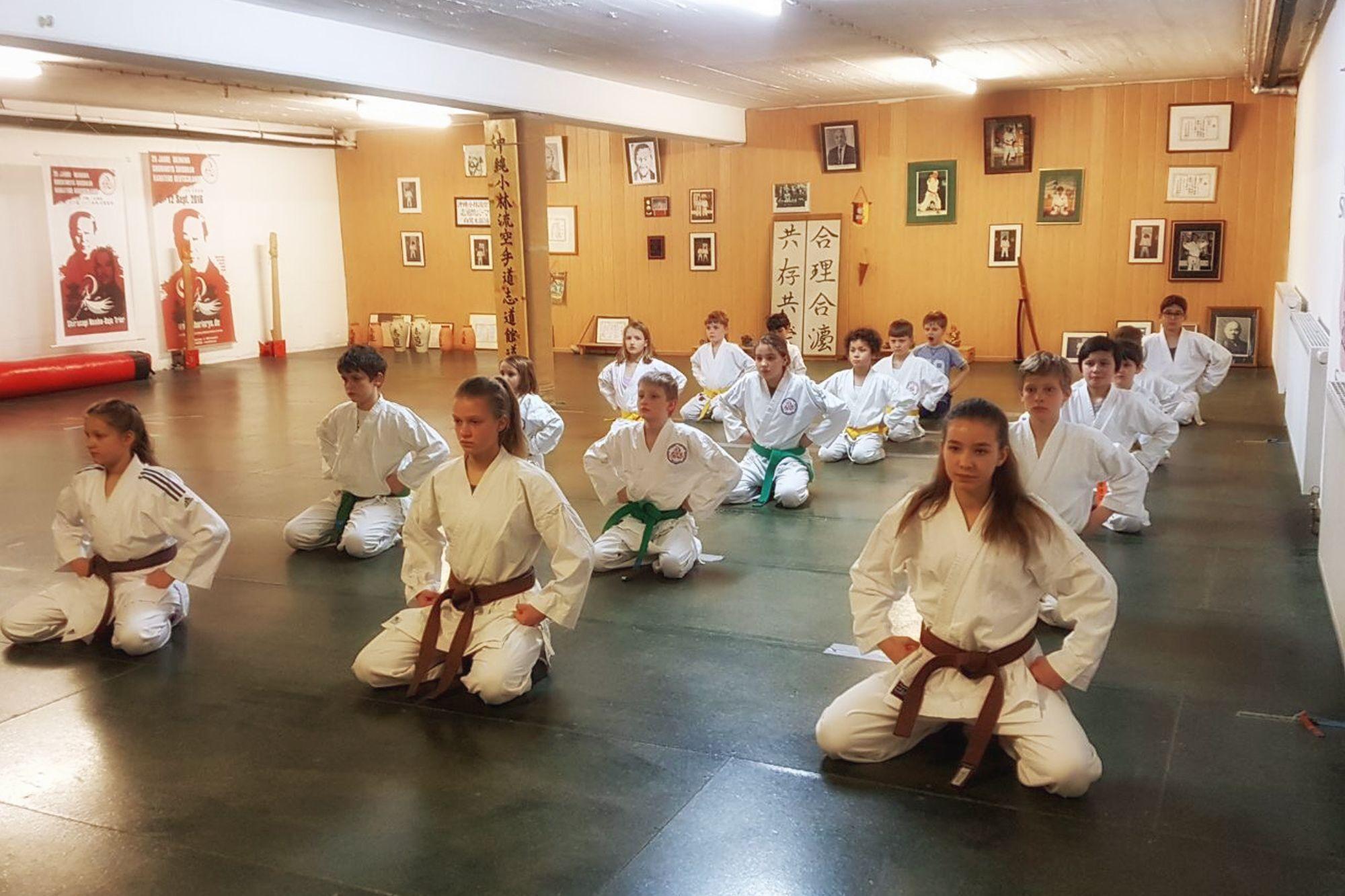 Okinawa Shorinryu Shidokan Karatedo english